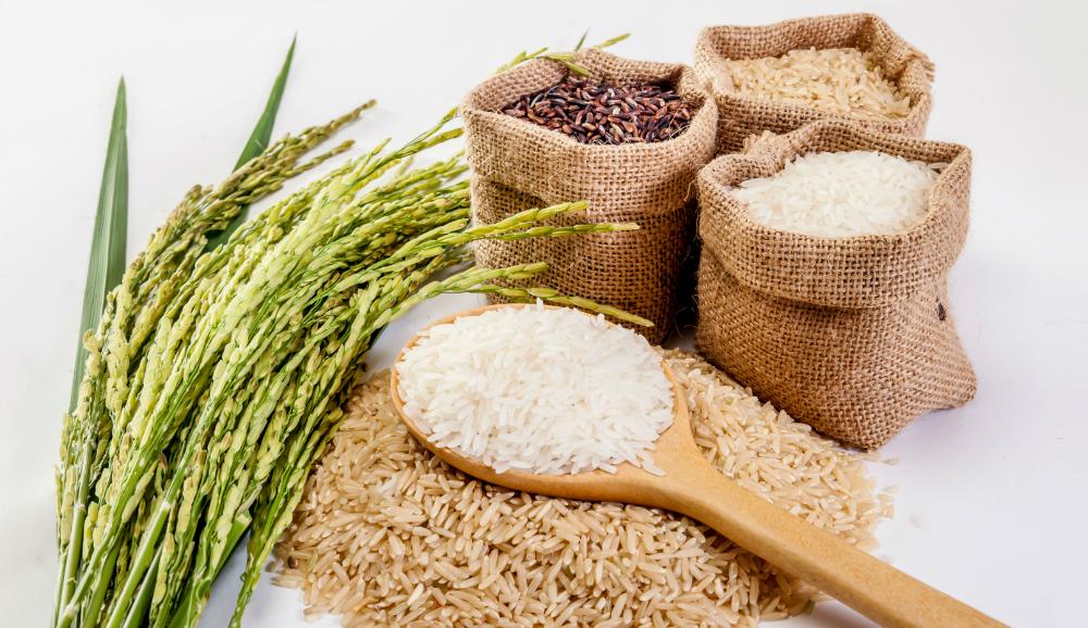 Nuevo arroz de digestión lenta podría ayudar a combatir la diabetes y la obesidad