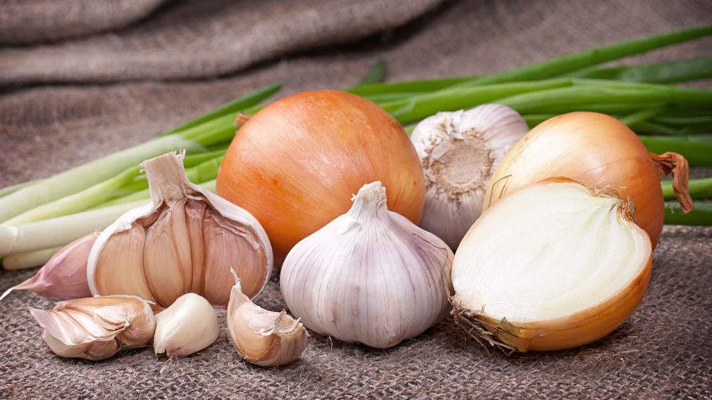 Tratamientos a base de plantas, semillas y especias que funciona para controlar la diabetes