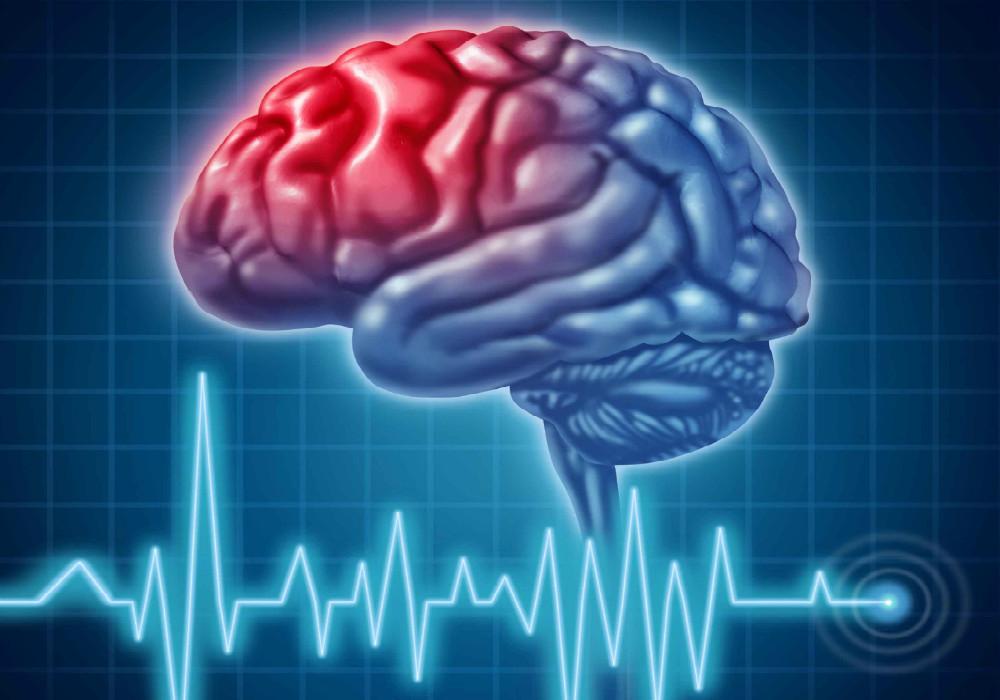 Colesterol – Bueno para el cerebro, malo para el corazón