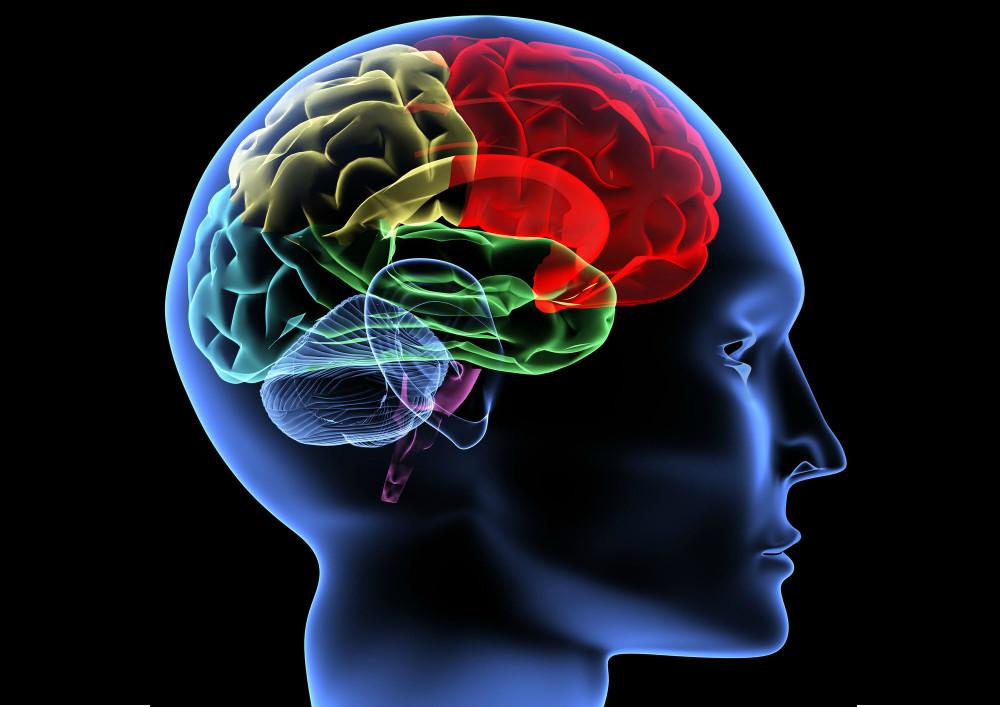 Episodios de hipoglucemia no ligados a la disfunción cognitiva