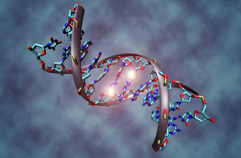 ¿La diabetes en su ADN? Los científicos analizan la genética de riesgo