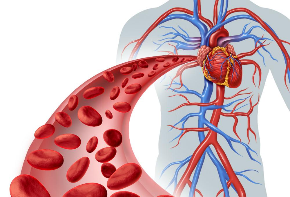 La hipoglucemia en la diabetes tipo 2 podría afectar a la salud del corazón