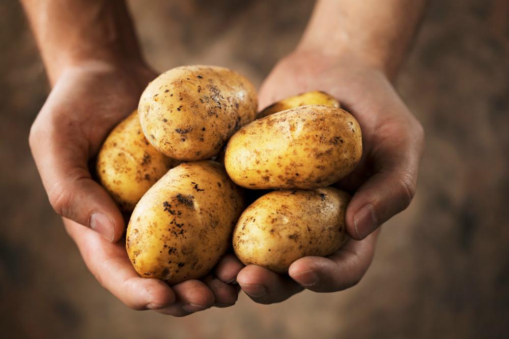 ¿Por qué las patatas elevan la glucosa en la sangre más que el azúcar?