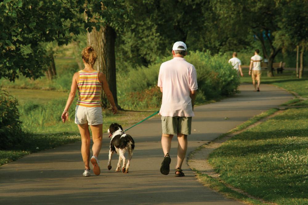 Ponerse en movimiento para prevenir la diabetes, la obesidad y sus complicaciones