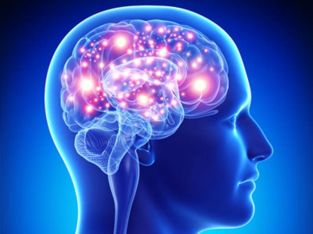 El ejercicio moderado recupera la disfunción de la memoria causada por la diabetes tipo 2