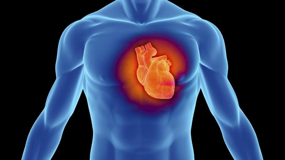 """Drogas para reducir las «grasas malas"""" no protegen el corazón."""